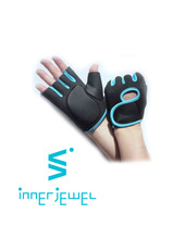 2 color Work-Out Gloves